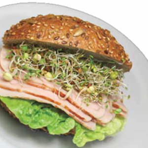 Green Valley Food Corp. BROCCOLI SANDWICH SPROUTS